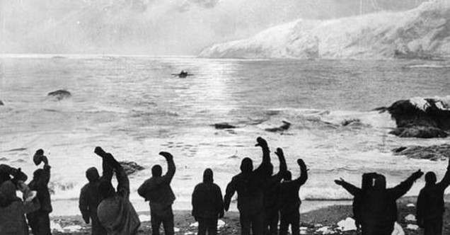What to Know about Going on an Arctic Exhibition